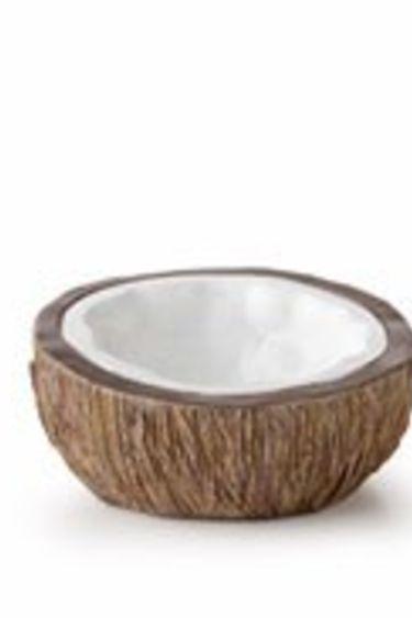 Exoterra Plat d'eau en forme de noix de coco - Coconut water dish