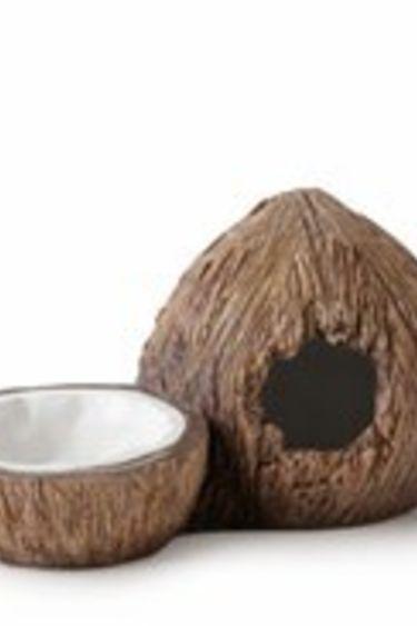 Exoterra Cachette et bol a eau en forme de noix de coco