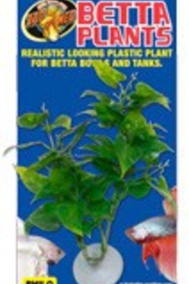 Zoomed Plante à Betta Philo