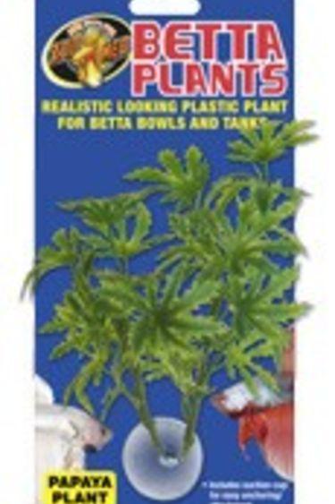 Zoomed Plante à Betta Papaye/Betta Plants™ – Papaya