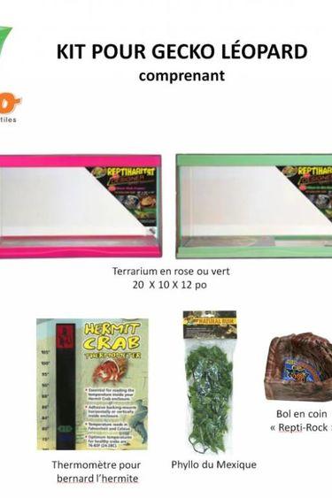 Magazoo Kit pour gecko léopard
