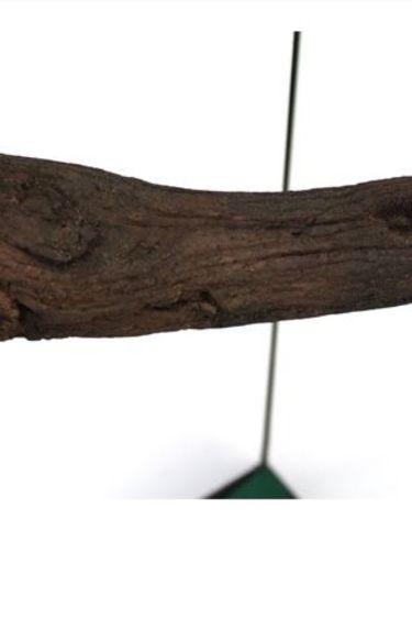 Pangea Branche en angle sur ventouses - Suction Cup Corner Branch (Suction Cup)
