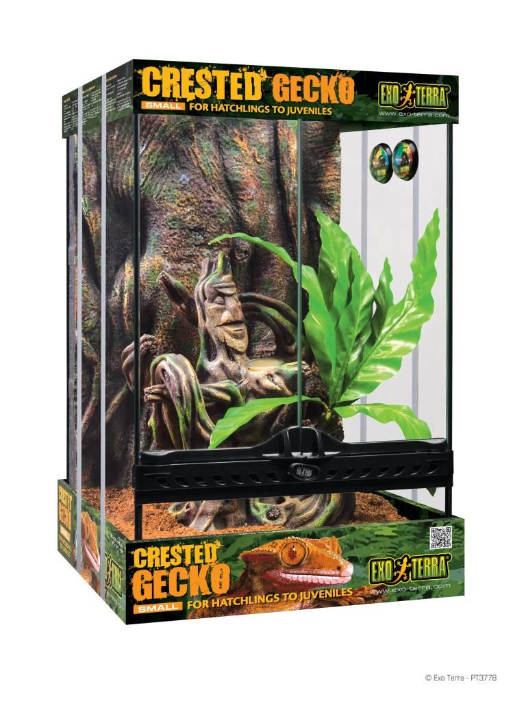 Exoterra Terrarium équipé pour gecko à crête petit 12 X 12 X 18 po