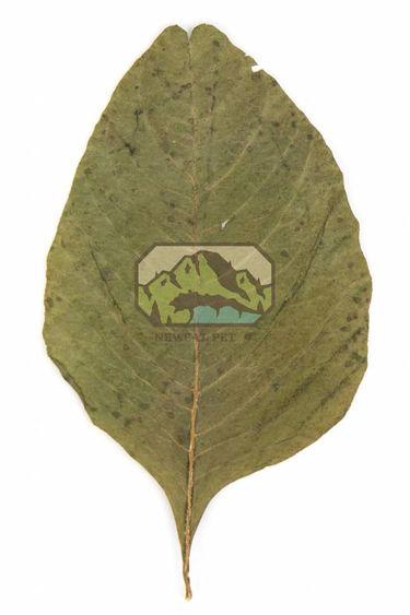 NewCal Pets Feuilles d'amarante pq de 20 - Amaranth Leaves