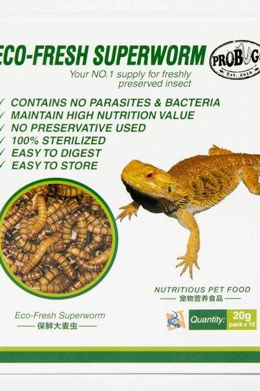 ProBugs Vers de farine géant /Eco-Fresh Superworms