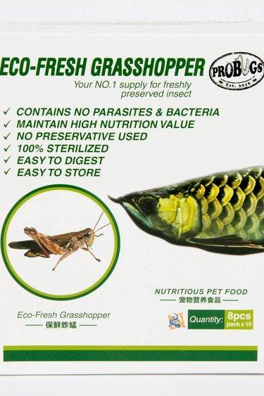 ProBugs Sauterelles Eco-Fresh Grasshopper