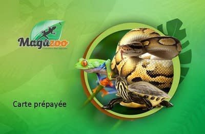 Magazoo Carte cadeau - web seulement sur mesure