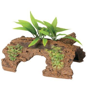 Marina Naturel Demi rondin de bois de grève de Malaisie avec plantes, grand