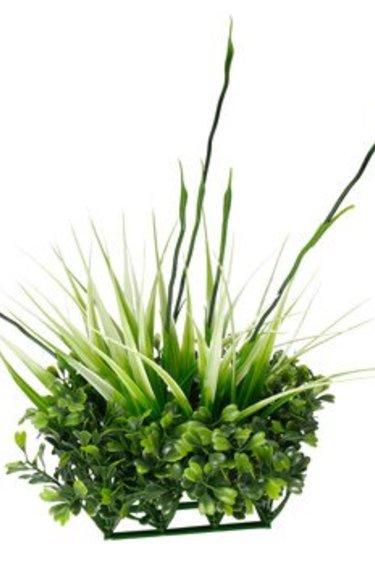 Ornement Chi, buis et herbe haute