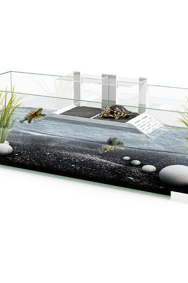 "Ciano Aquarium contemporaine pour tortue 31"" x 11.5"" x 9.5 po"