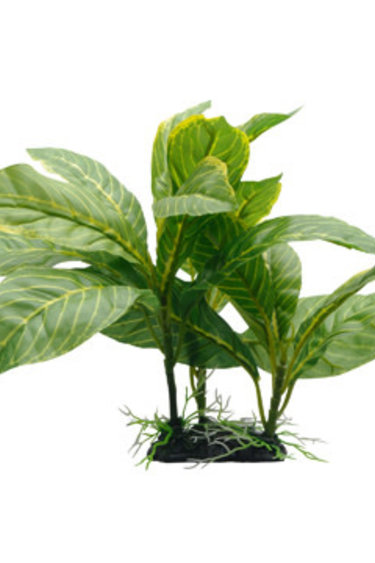 Fluval Spathiphyllum à rayures jaunes  22 cm (9 po), avec base