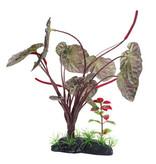 Fluval Lotus sacré rouge, grand, 25 cm (10 po), avec base