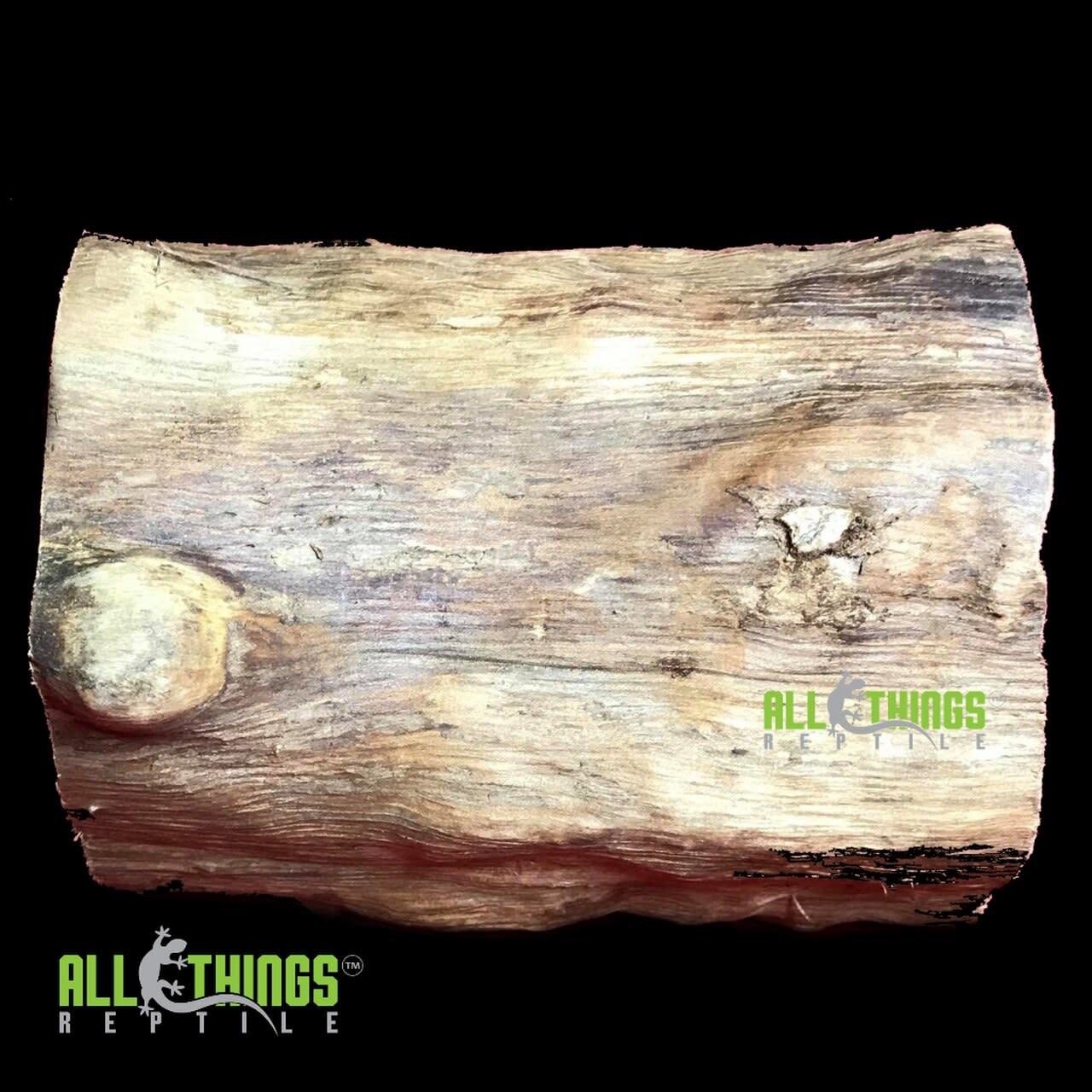 All things reptile Cachette bûche naturelle - ATR Natural Log Hide
