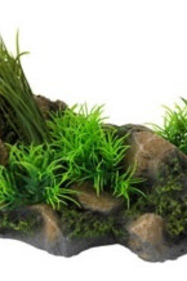 Formation rocheuse avec plante