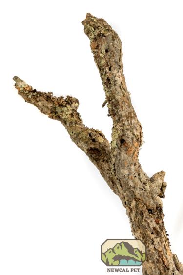 NewCal Pets Branche d'écorce mince - Cork branch thin