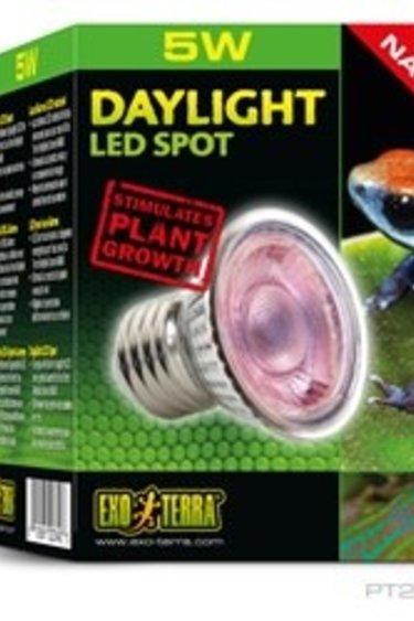 Ampoule à DEL diurne Nano Daylight LED Spot NANO 5W
