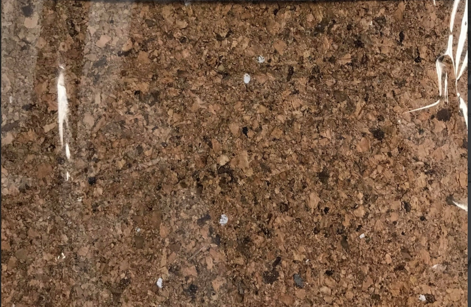 All things reptile Fond d'écorce naturelle - ATR Natural Cork Tile Background