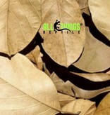 All things reptile Feuilles de Jackfruit séchées Grade A pq de 10 - Jackfruit Leaves