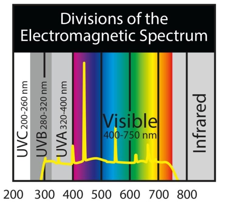 Zoomed Paludarium 3-in-1 Lamp - 26 W
