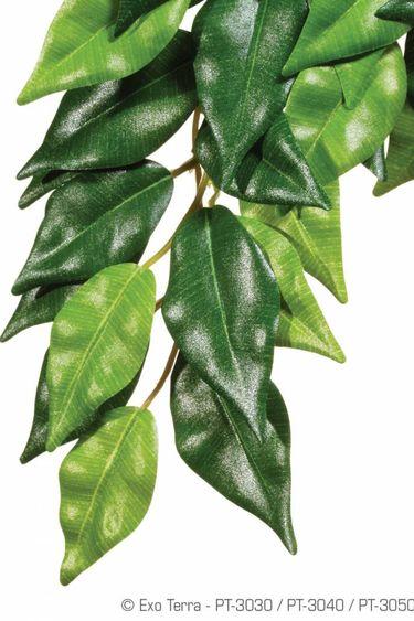 Exoterra Plante ficus en soie