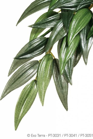 Exoterra Plante rucus en soie