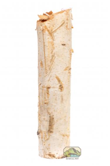 NewCal Pets Branche naturelle de bouleau - Birch tree branche