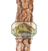 NewCal Pets Branche d'écorce naturelle Galho Estela - Galho Estela Natural Cork Branch