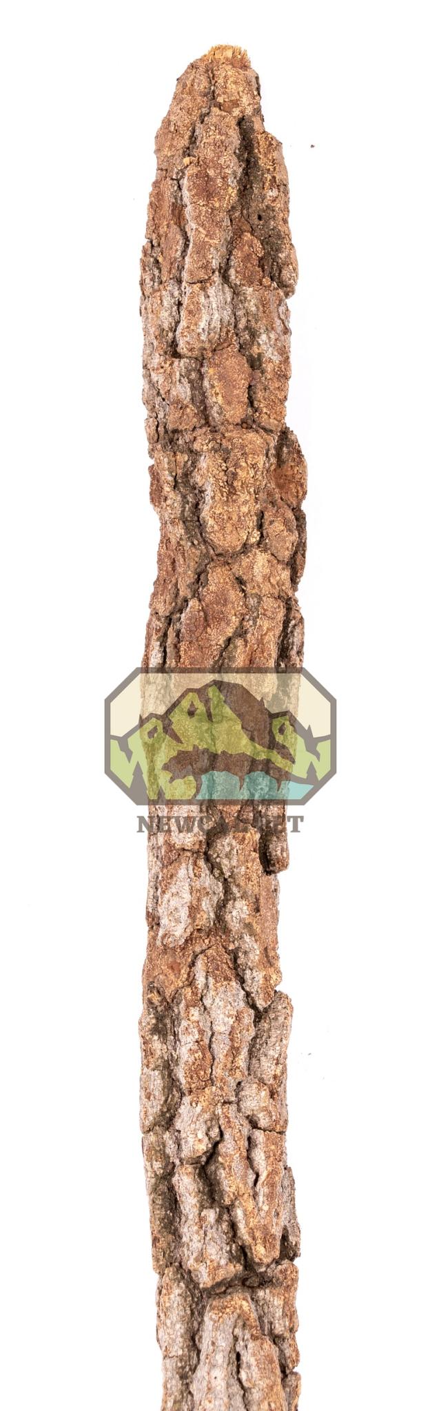 NewCal Pets Branche de liège naturel Galho Estela - Galho Estela Natural Cork Branch