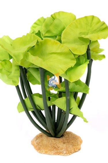 Aqua Globe Lotus 8 po de haut