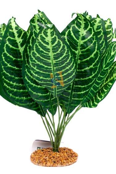 Aqua Globe Plante en soie avec base - Zebra Japonica 15 po
