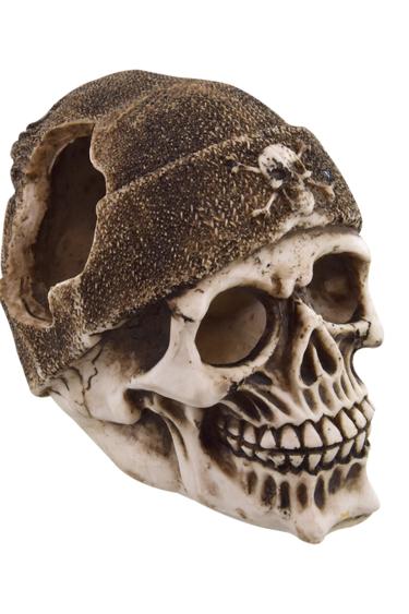 Treasures underwater Crâne de boucanier - Buccaneer Skull