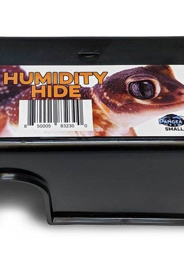 Pangea Cachette humide - Humidity Hide