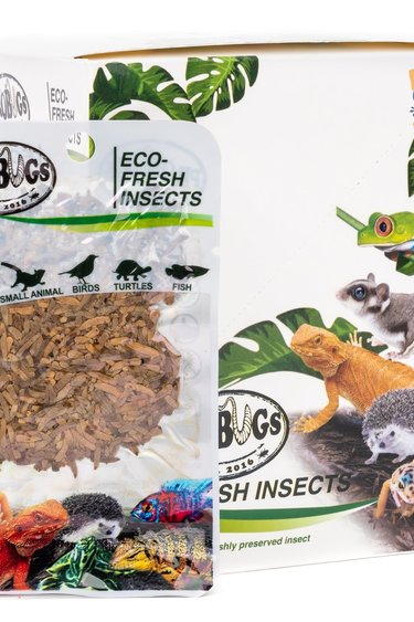 ProBugs Vers de riz Eco-Fresh/Riceworms