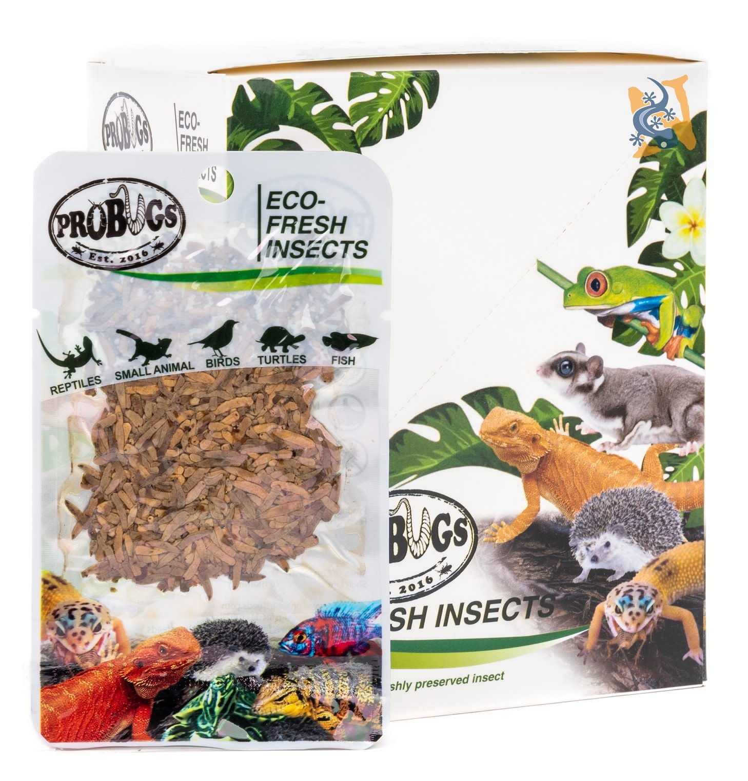 ProBugs Vers de riz Eco-Fresh/Riceworms