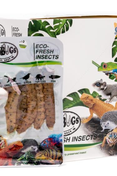 ProBugs Vers de soie Eco-Fresh/Silkworms