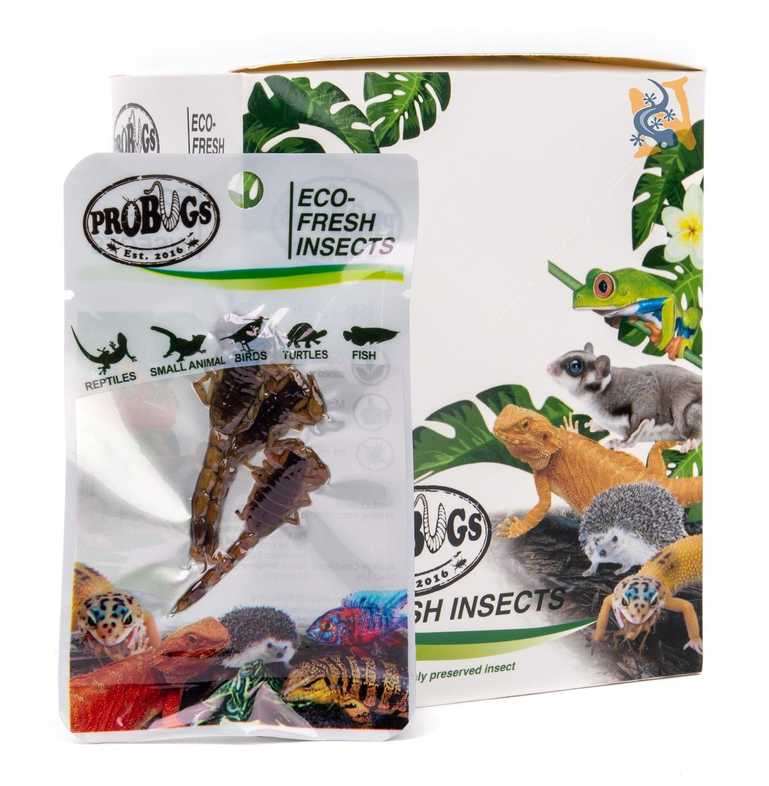 ProBugs Scorpion Eco-Fresh/Scorpion