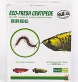 ProBugs Centipede Eco-Fresh/centipede