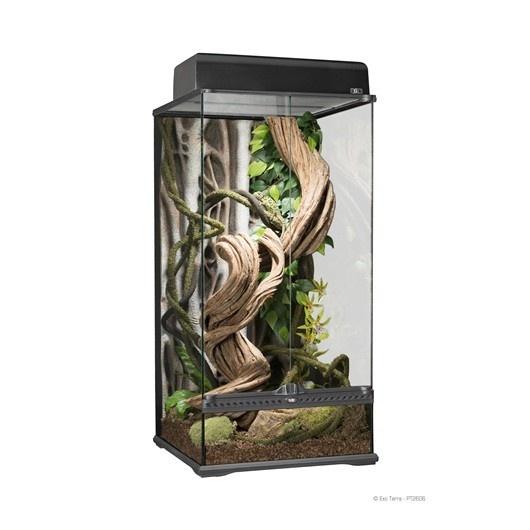 Exoterra Terrarium en verre très haut