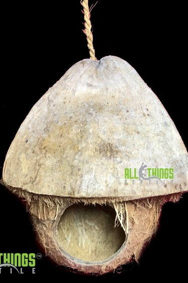 All things reptile Maison/cachette noix de coco - Hanging Coconut House/Hide