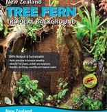 Fern Wood Background Fougère arborescente - Fern Wood Tree Fern Panel