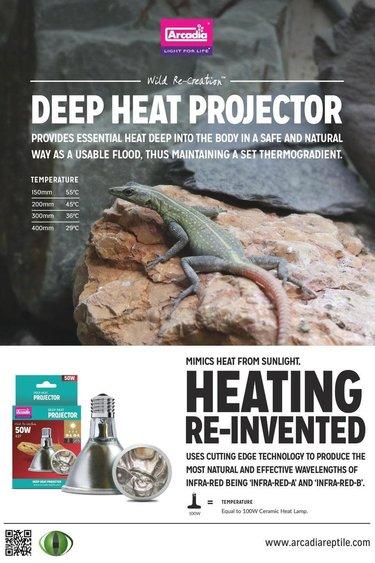 Arcadia Projecteur de chaleur profonde pour reptile 50 W - Reptile Deep Heat Projector 50W