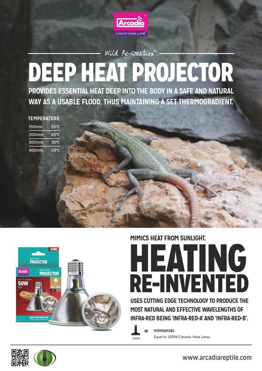 Arcadia Procjecteur de chaleur profonde pour reptile 50 W - Reptile Deep Heat Projector 50W