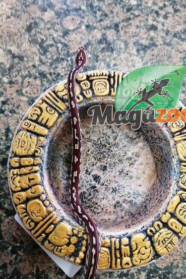 Magazoo Serpent des blés Tessera