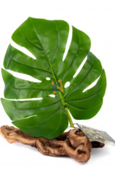 Pet-Tekk Feuille unique sur bois - Single Leaf Hide on Driftwood