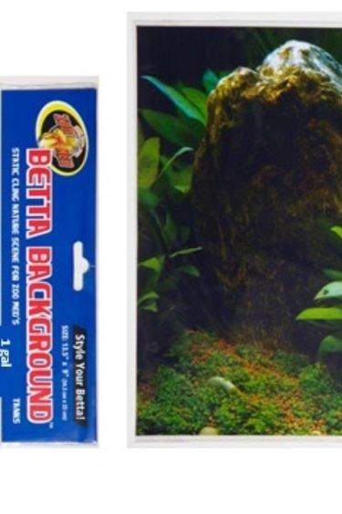 Zoomed Betta arrière plan/Betta Background™