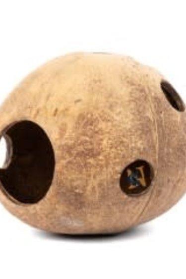 Aqua Globe Noix de coco entière - Coconut Whole