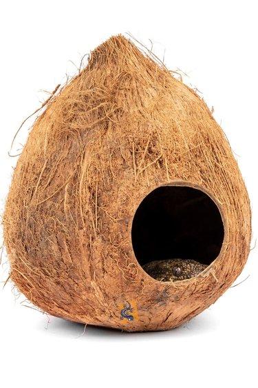 Aqua Globe Coquille de noix de coco - Coconut Shell