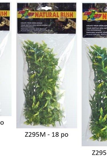 Zoomed Croton de Bolivie – Bolivian Croton