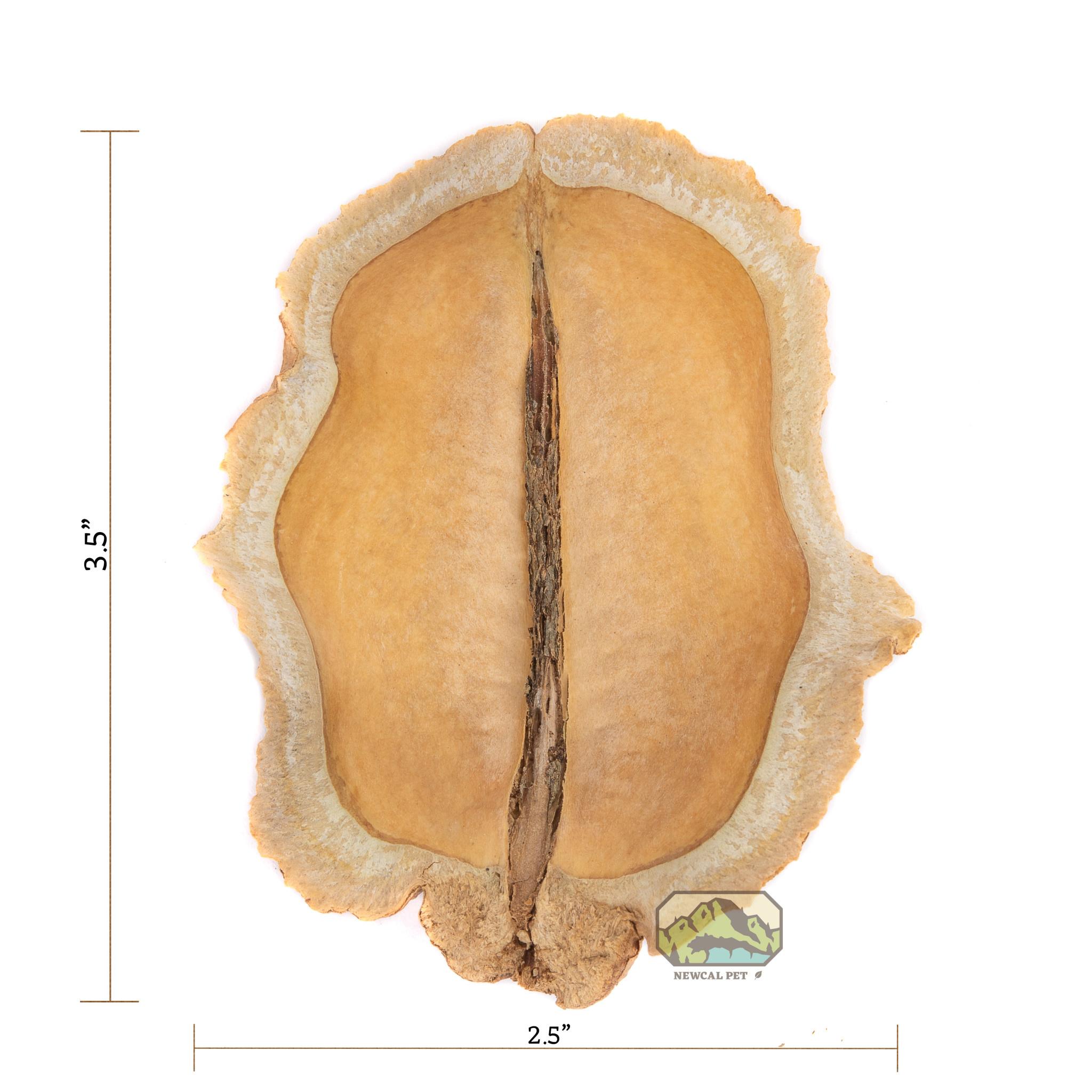 NewCal Pets Bouche de grenouille - Paquet de 3 - Frog's Mouth, 3 Pack