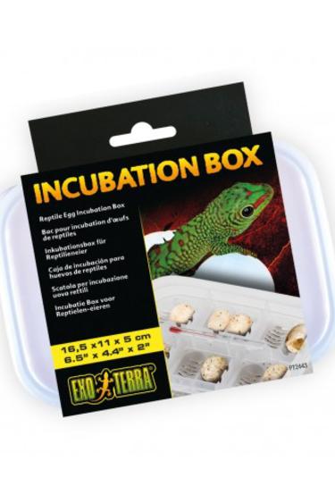 Exoterra Bac pour incubation